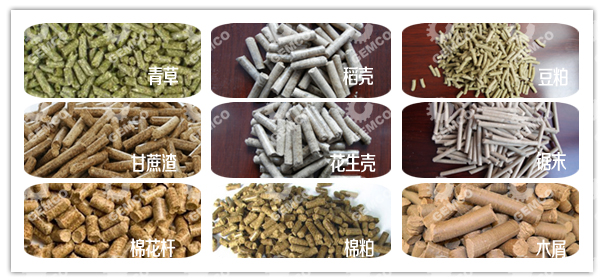 各种原料经饲料颗粒机压制成的颗粒